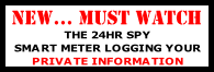 THE 24HR SPY